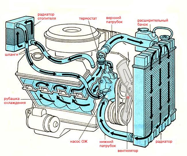 устройство системы охлаждения авто